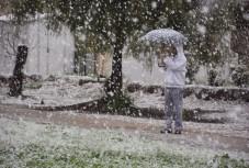 נאות בשלג